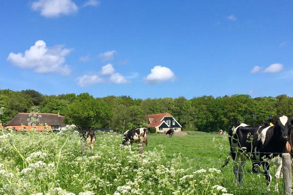 De 14 Sterren Hotel op waddeneiland Texel